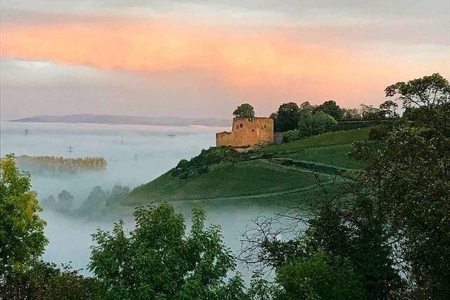 Die Hecklinger Burgruine im Nebel