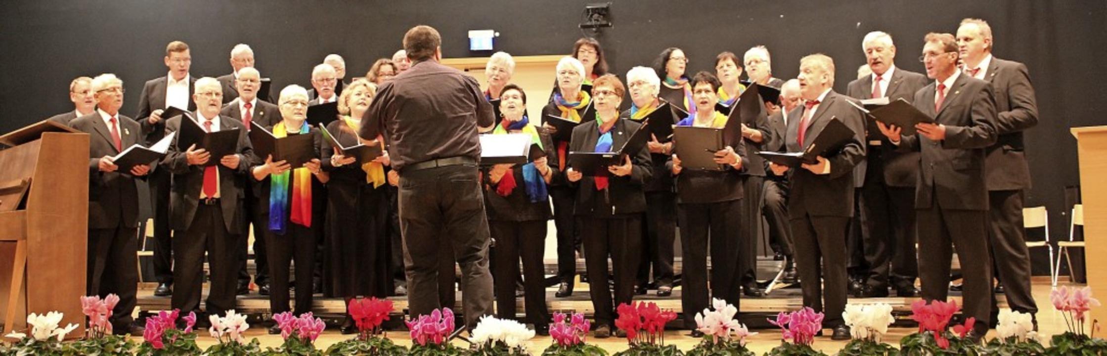 Der Gesangverein Hartheim in seiner ge...mmen mit dem Dirigenten Ulrich Strub.   | Foto: Otmar Faller
