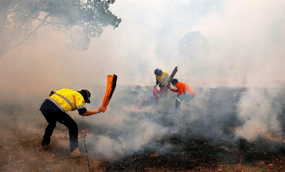 Buschfeuer in Australien  | Foto: Darren Pateman (dpa)
