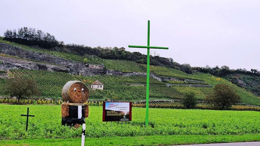 Landwirte aus Breisach und Ihringen fürchten um ihre Existenz - Breisach - Badische Zeitung - Badische Zeitung