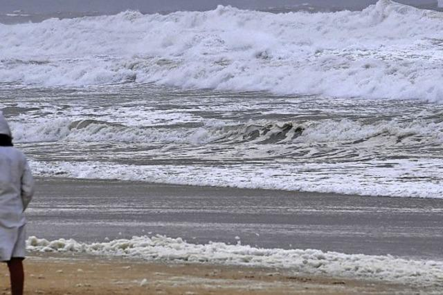 Berauschendes Strandgut