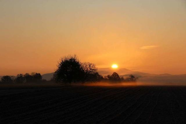 Über dem Katharinenberg geht die Sonne auf