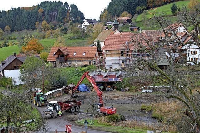 Baggern in Vogelbach