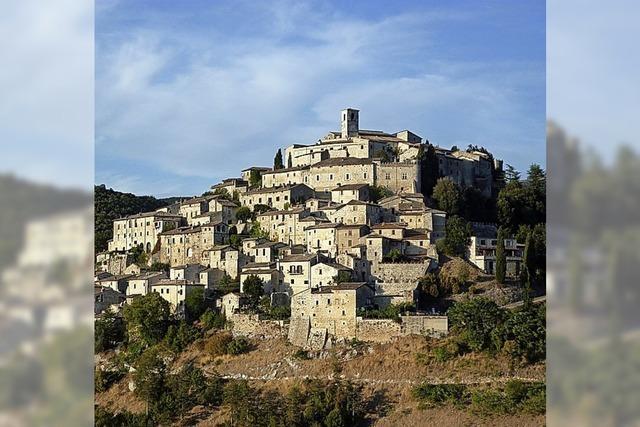 Labro in Italien