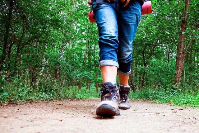 Wandern im Hotzenwald liegt weiter im Trend