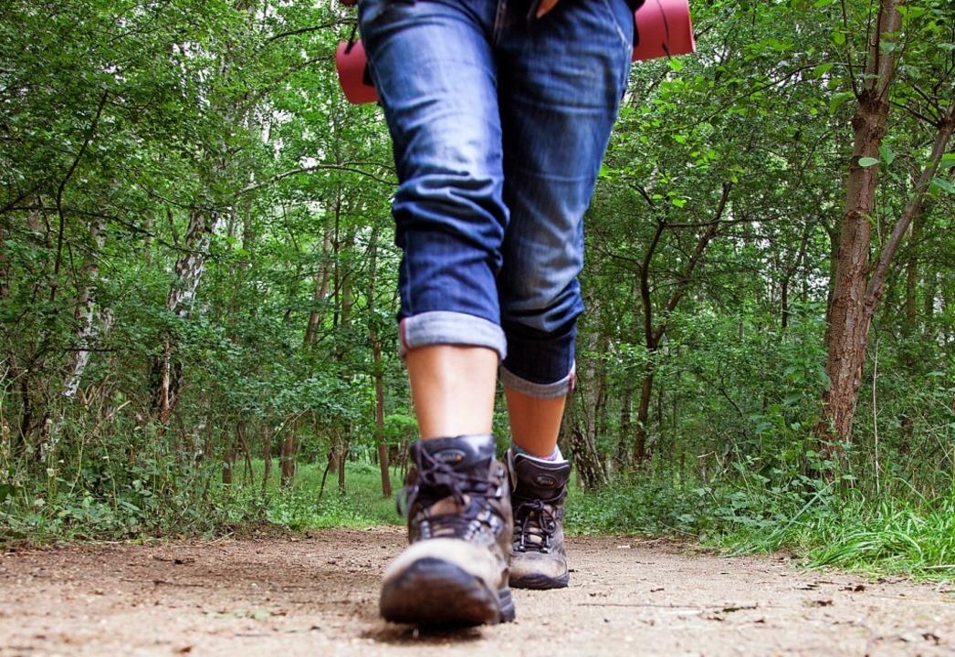 Wanderrouten auf dem Hotzenwald  werde...elaufen, fotografiert und beschrieben.  | Foto: Christin Klose