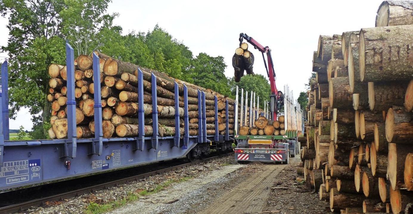 Das Regierungspräsidium Freiburg hat H...Sauschwänzlebahn eine Absage erteilt.     Foto: Josef Unger
