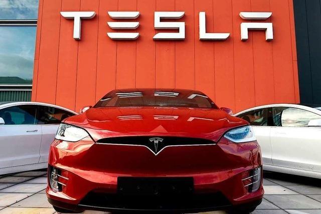 Der Lahrer Flugplatz war als Standort für die Tesla-Großfabrik im Gespräch