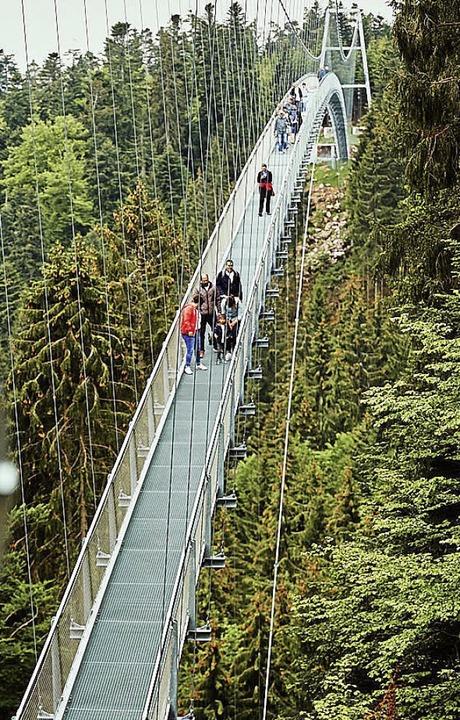 Eine Hängebrücke ähnlich der abgebilde...l beim Todtnauer Wasserfall entstehen.  | Foto: Nico Pudimat
