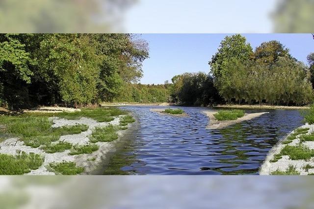 Arbeiten am Donauzusammenfluss beginnen