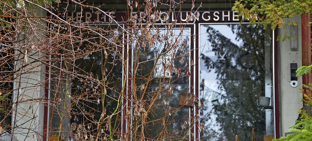 Lenzkirch will Sanierung voranbringen - Lenzkirch - Badische Zeitung