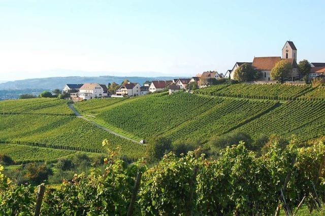Pestizide bleiben am Tüllinger Berg wohl erlaubt