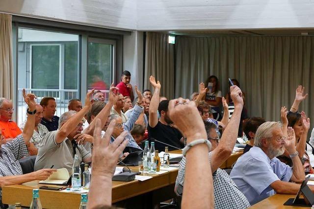 Grüne kritisieren in Rheinfelden, dass Anträge noch nicht behandelt wurden