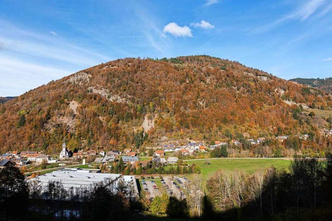 Die Geschwender Halde: Links oben sieh...Felsbrocken ins Tal zu stürzen drohen.  | Foto: Philipp von Ditfurth (dpa)