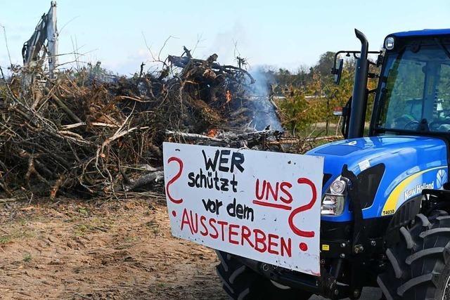 Traktorkonvoi und Mahnfeuer: Landwirte demonstrieren gegen die Bundesregierung