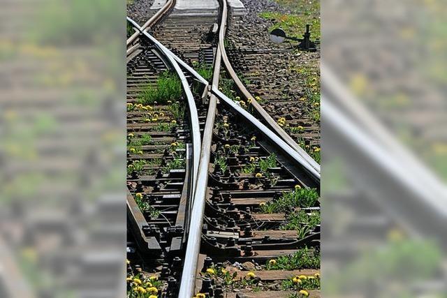 Der Bahnlärm ist das große Thema