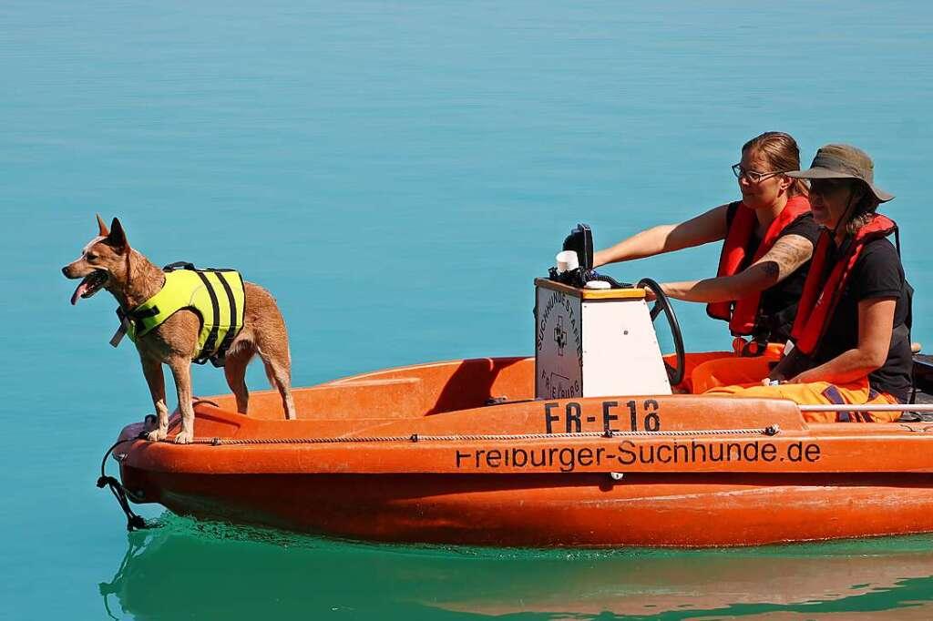 Rettungshunde helfen bei der Suche nach Vermissten - Breisach - Badische Zeitung - Badische Zeitung