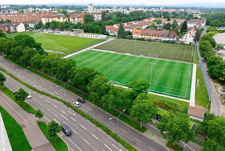 Die Baumreihe zum Weststadion sollte d...tz machen. Daraus wird vorerst nichts.  | Foto: Ingo Schneider