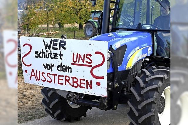 Demonstration gegen die Agrarpolitik