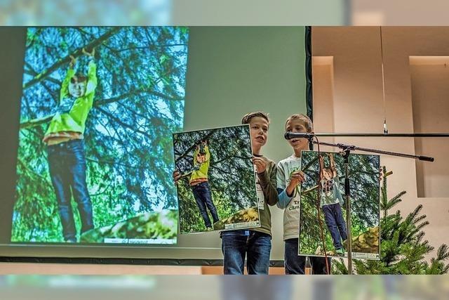 Bäume in Bild und Text