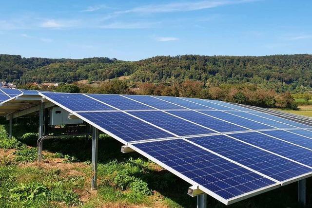 Ein Solarpark soll in Fröhnd Strom liefern
