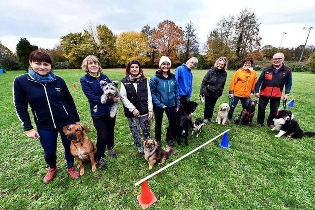 Wo Hunde und ihre Menschen in Freiburg-Mundenhof gemeinsam Sport machen