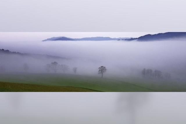 In der Nebelsuppe