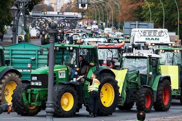Das sagt der Mitorganisator der Protestdemo, bei der Landwirte nach Berlin fahren