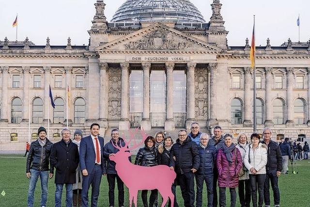 Hauptstadt-Pirsch mit Hirsch