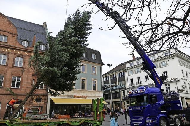 Der Weihnachtsbaum steht