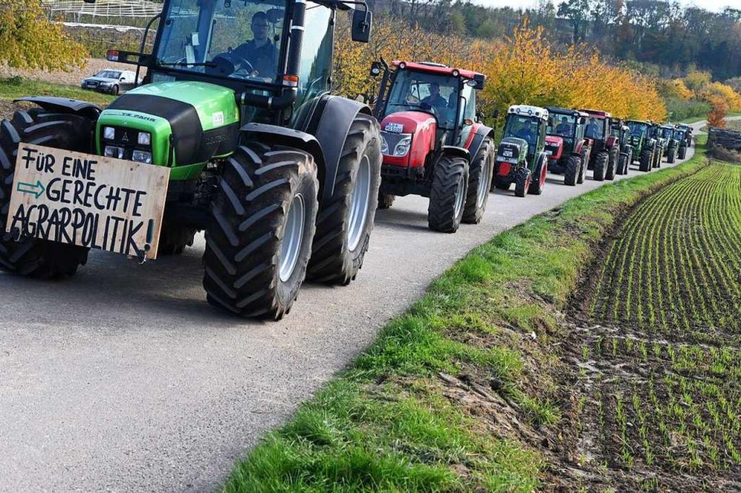 Traktordemonstration vom vergangenen Wochenende  | Foto: Jonas Hirt
