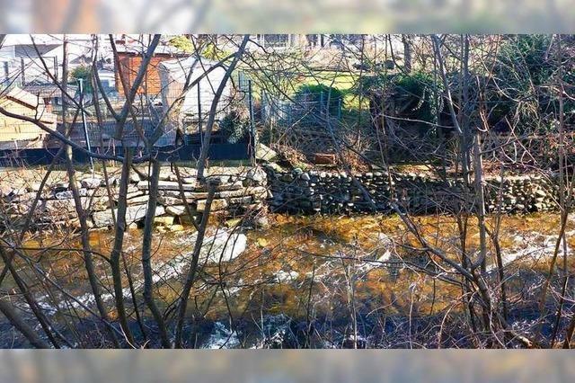 Schadhafte Ufermauern an der Brugga in Kirchzarten kommen weg