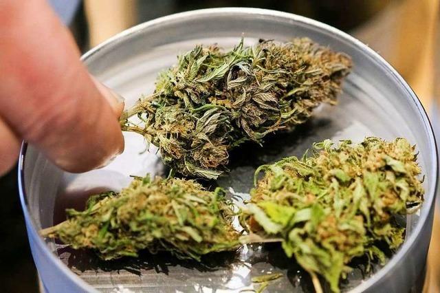 Polizei stellt Cannabis bei Wohnungsdurchsuchung in Freiburg sicher
