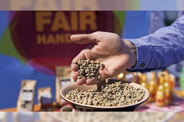 Pflänzchen Fair-Trade wächst
