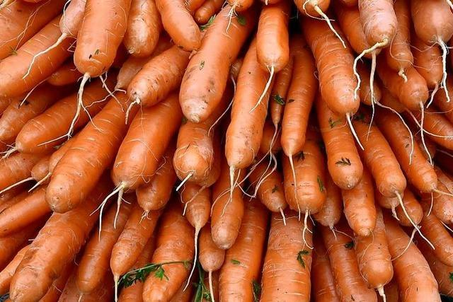 Acht Tonnen Karotten in Mannheim zu Brei gefahren
