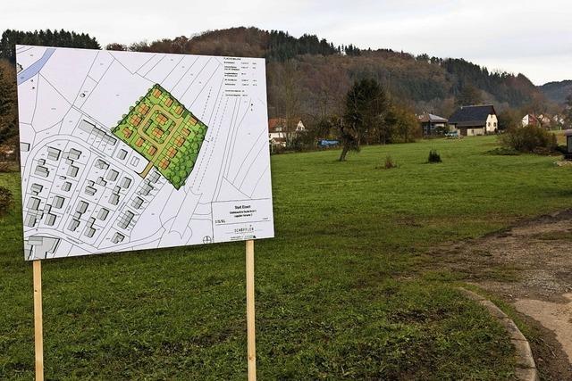 Neubaugebiet Brühl II nimmt Form an