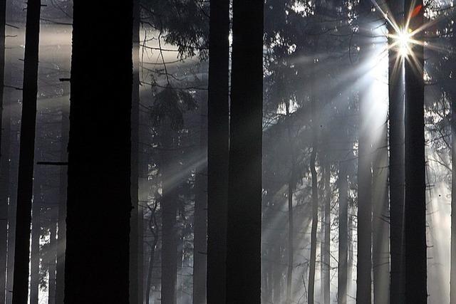 Nur vereinzelte Lichtblicke