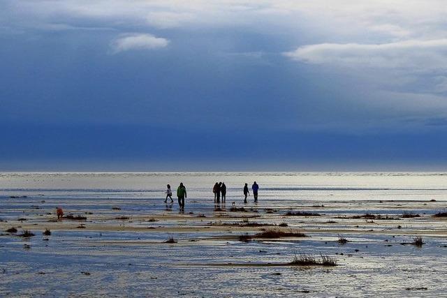 Hyggelig-glückliche Ferien auf Fanø