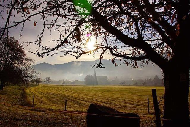 Stimmungsvoller Herbstmorgen auf dem Eichberg