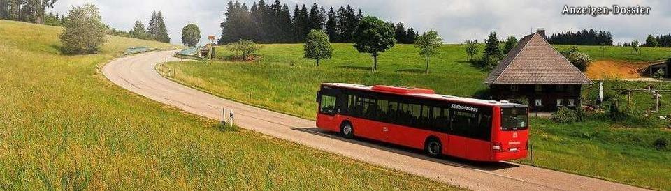Der Regio-Verkehrsverbund Freiburg (RVF)