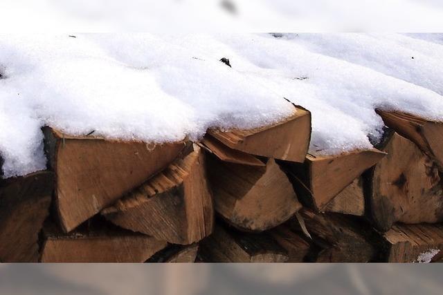 Wald als Zuschussbetrieb