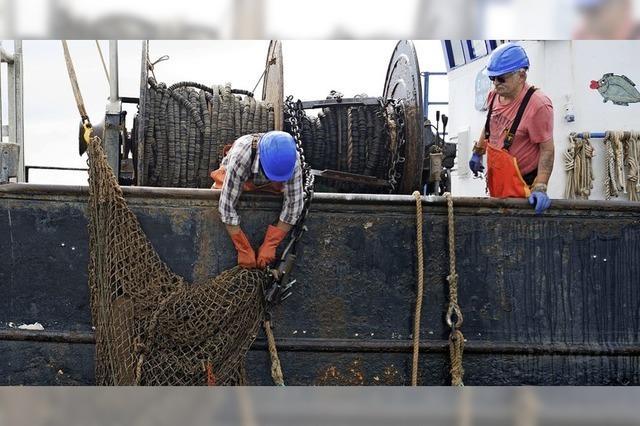 Dubiose Geschäfte mit Meeresmüll
