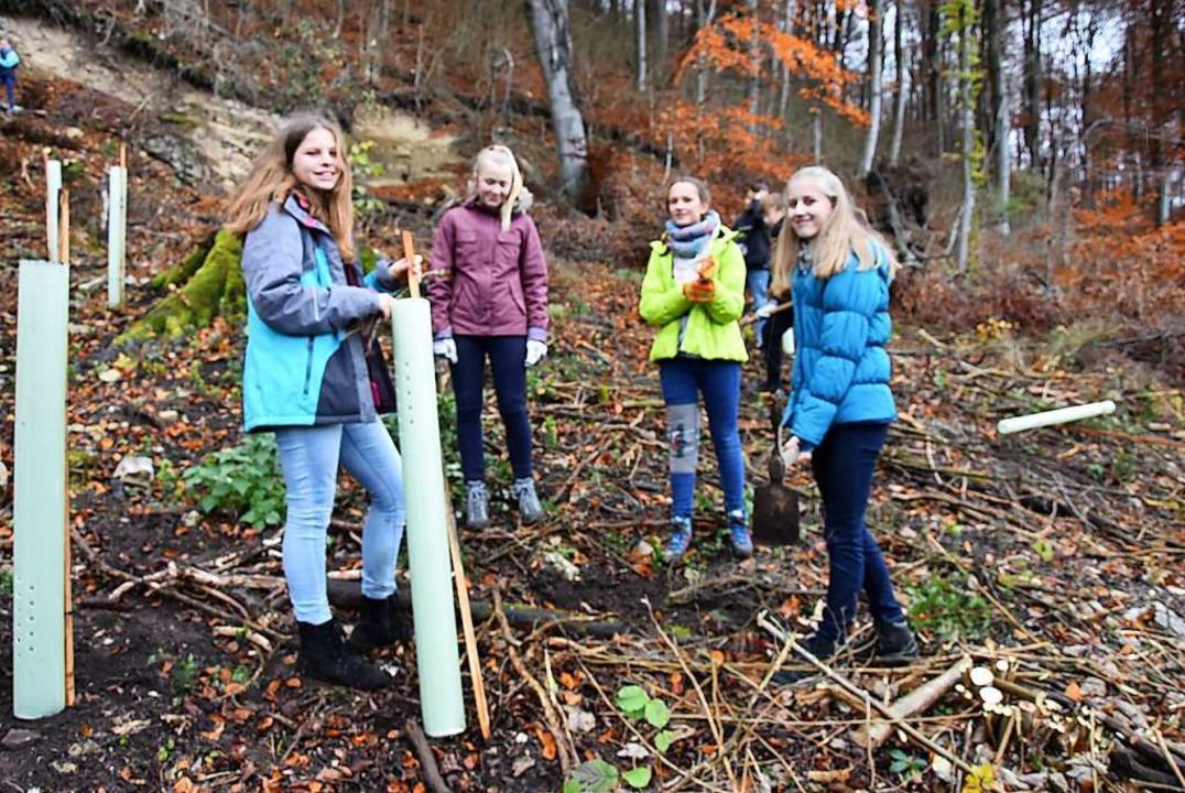 Eindrücke von der Baumpflanzaktion  | Foto: Heinz und Monika Vollmar