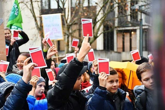 Rund 400 Menschen nehmen an der Klima-Demo in Lörrach teil