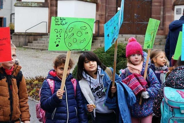 Warum Schönauer Schüler auf die Straße gehen