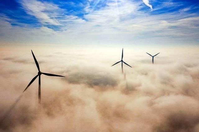 Klimaschutz und Wirtschaft müssen keine Feinde sein, glaubt Michael Ziesemer