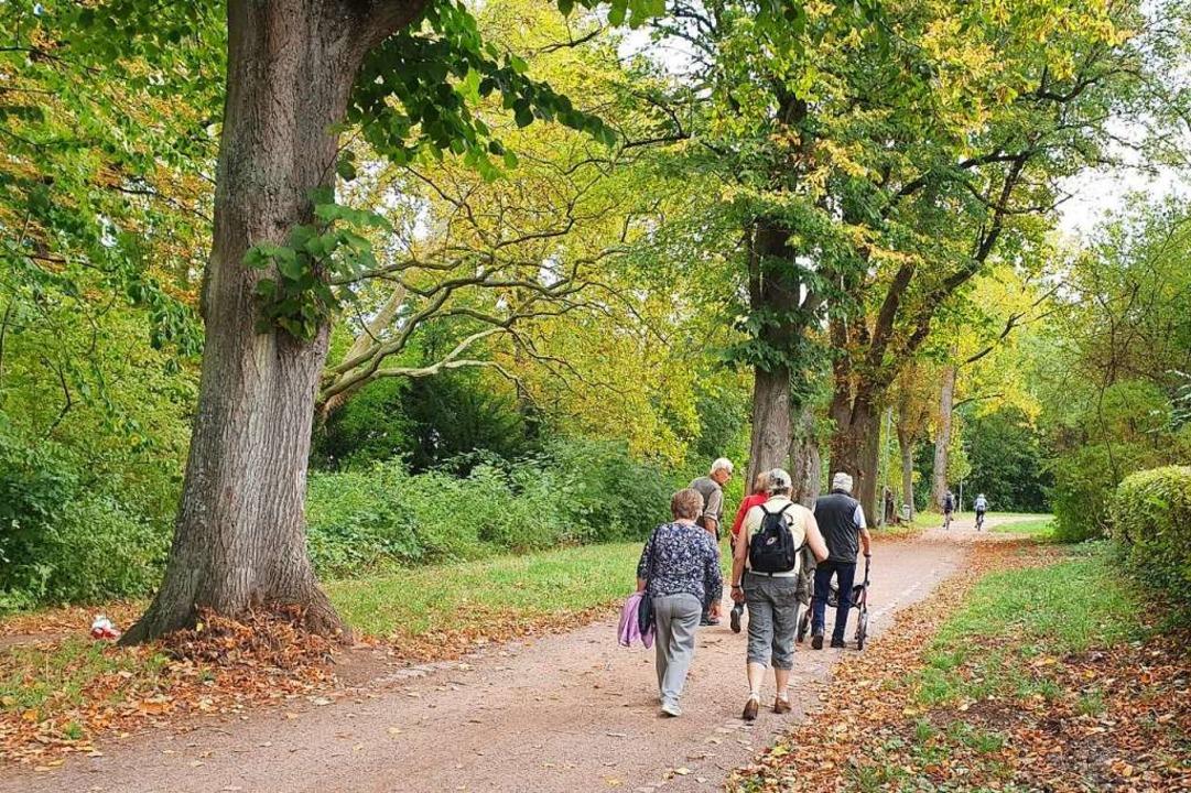 Gemeinsam unterwegs: Nach dem Verlust ...st das für Trauernde eine große Hilfe.  | Foto: Caritasverband für den Landkreis Emmendingen e.V.