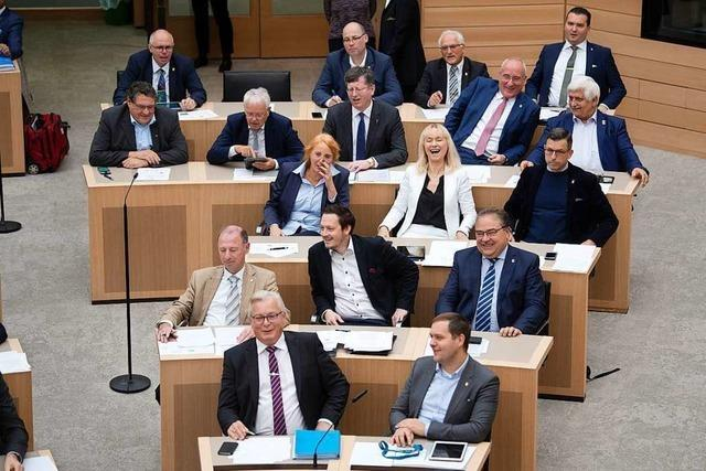 Die AfD-Fraktion in Baden-Württemberg schrumpft weiter