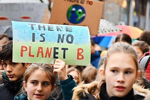 Der Marktmechanismus soll die Kosten beim Klimaschutz senken