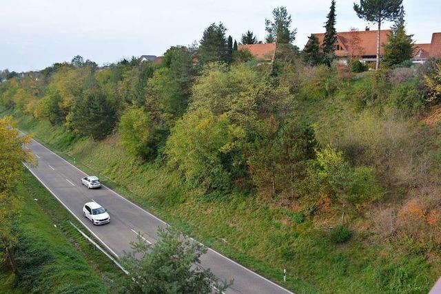 Bern glaubt nicht, dass Riehen die Zollfreie Straße als Umgehung ausweisen kann
